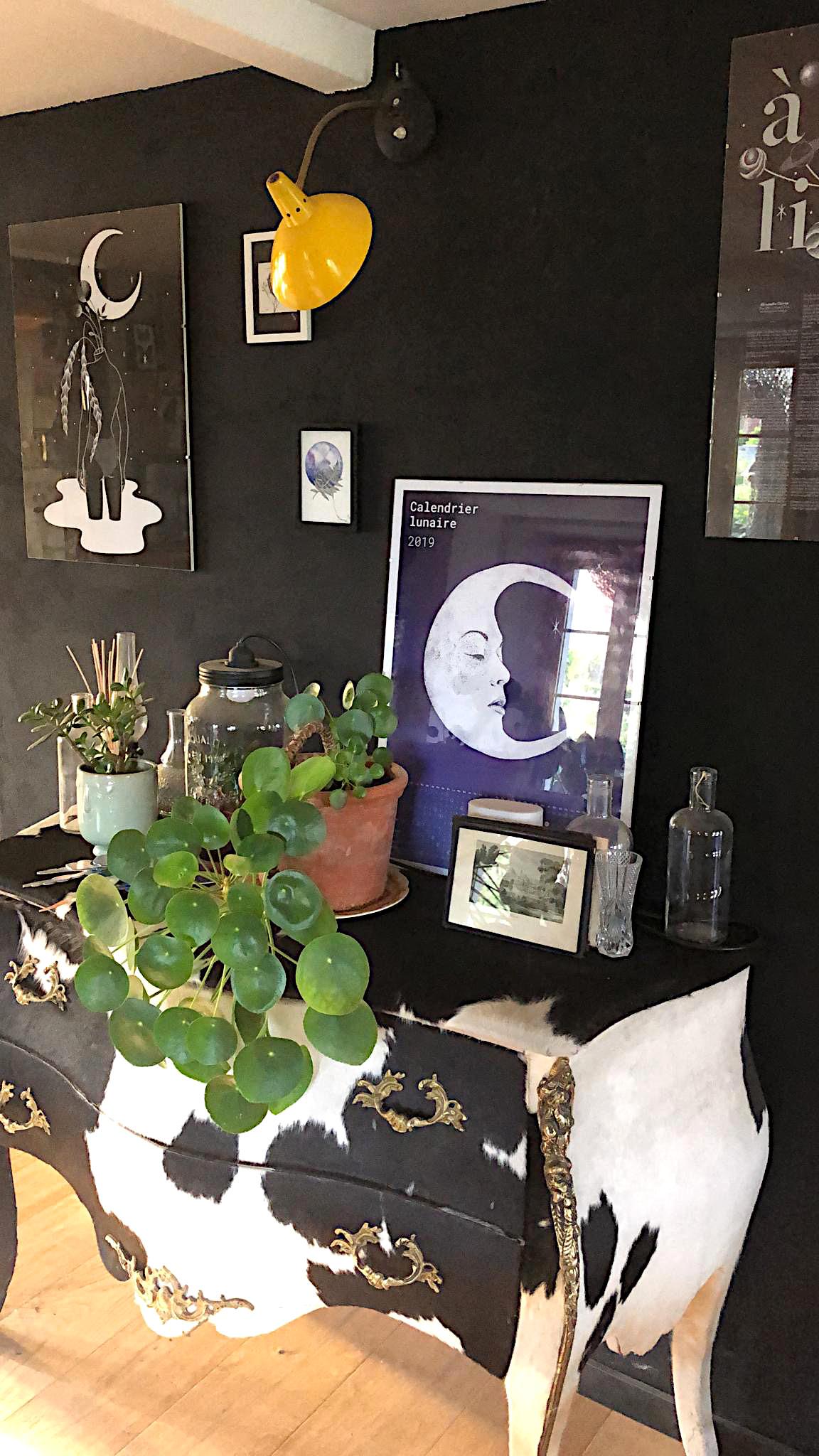 Aquarelle noiram mlam poncet la petite fleureuse judski pilea