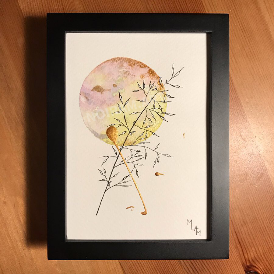 Aquarelle Amélie rose jaune mlam noiram marion-lorraine poncet planète plante