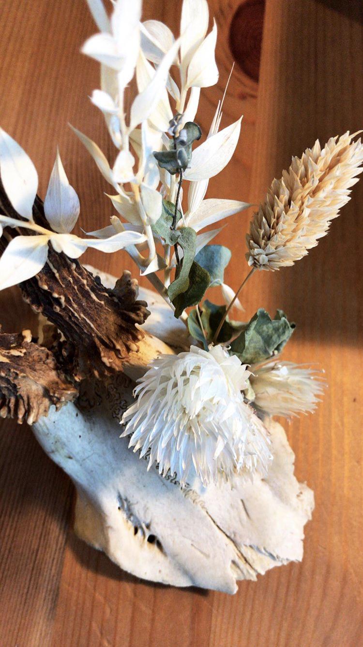mlam noiram crâne fleurs séchées